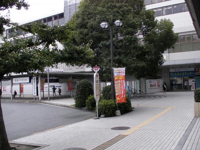 0480-1.jpg